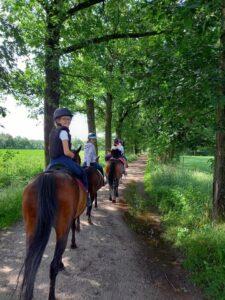 Heyo vakantie kampen paardrijden zee